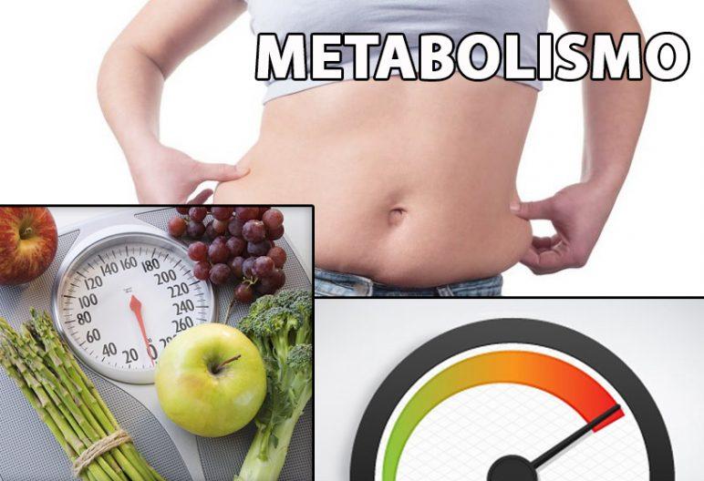Paola dondoli metabolismo